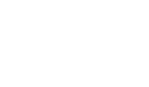 University of Austin at Texas Logo